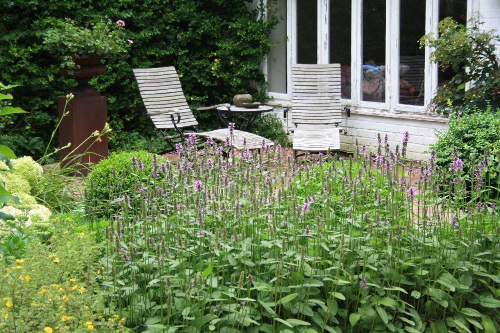 Lazy Gardening – entspannt gärtnern