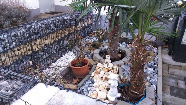 Todesstreifen mit Alibipflanzen – Ein Plädoyer gegen Schotterwüsten