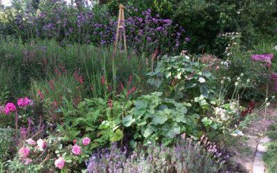 Genießergarten Eingangsbeet neu Sommer 2016 3